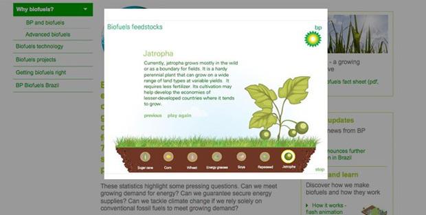 _Understanding-Biofuels-2